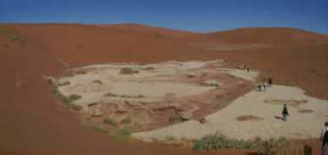 Walk in the Namib desert - the landscape is changing every 100 meters